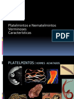 platelmintes.pptx