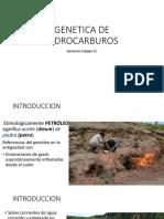 2.0 GENETICA DE HIDROCARBUROS.pdf