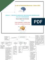Tarea 2_Fisiología de La Plasticidad Neuronal _abigail Juarez Hernandez (1)