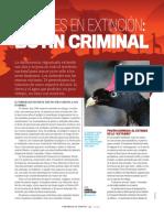 Animales en extincion.pdf