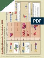 Remodelación de cromatina CHD (1).pdf