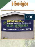 cultivo-del-cafe-ecologico.pdf