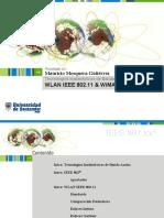 wlan-ieee-80211-y-wimax-5942