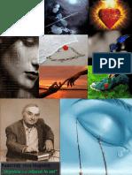 0_frunze_de_dor_de_ion_druta.pptx