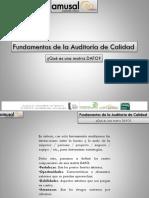 Fundamentos Auditoria Calidad Dafo