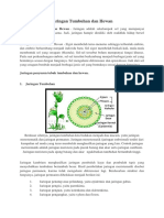 Jaringan Tumbuhan Dan Hewan