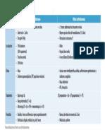 Cudro Diferencia Entre Nefro y Enuroblastoma