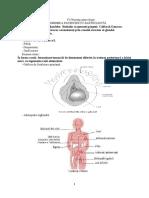 C 4 nursing ginecologic.docx