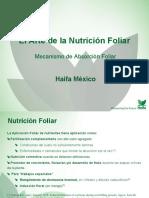 Nutricion_foliar_presentation.pdf