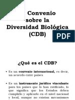 Convenio Diversidad Biológica 1992