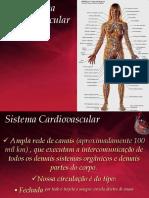 Sistema Cardiovascular - PH.pdf
