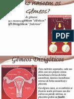 Sistema Rep. Humano e Gamet. - Métodos Contracep. e DSTs.pdf