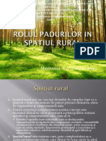 Rolul Padurilor in Spatiul Rural