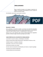 DEPOSITOS CORDILLERANOS.docx