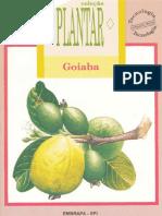 GOIABA II - Coleção Plantar - EMBRAPA (Iuri Carvalho Agrônomo)