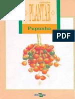 Propagação Do Abacaxizeiro - Coleção Plantar - Embrapa (Iuri Carvalho Agrônomo)