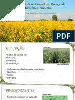 Adubação Verde No Controle de Doenças de Hortícolas e Frutícolas