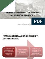Terapia de Grupos Con Familias Multiproblematicas