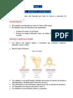Resumen Tema 3 (26112018) ciencias naturales