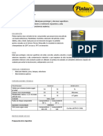 PINTUCOAT.pdf