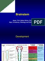 Brainstem Engl
