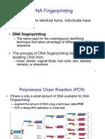 Ch16_17rDNA
