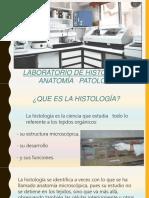 Laboratorio de histologia .pdf