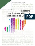 panorama_mich.pdf