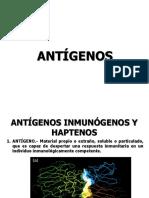 7.- ANTIGENOS