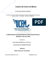 LA IMPORTANCIA DE ESTRATEGIAS DE CAPACITACION PARA EL DESAROLLO DE LAS PYME