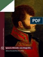 3. Rivas de la Chica, Adriana, 'Ignacio Allende, una biografía', cap. III 4, p. 145-161.