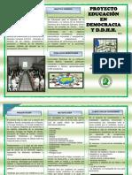 1. Plegable Presentación Proyecto 9 a 11 y Padres de Flia