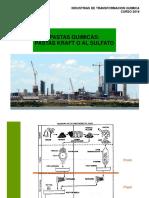 Pastas Quimicas Kraft 2018 PDF