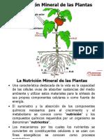 Los+Nutrientes+Part_I