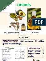 Clase 8 Metabolitos Primarios Lípidos