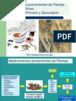 Clase 7-Medicamentos Provenientes de Plantas-Metabolismo Primario