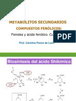Clase 9-Metabolitos Secundarios