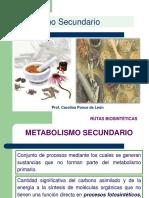 Clase 8-Metabolismo Secundario-Rutas Biosintéticas