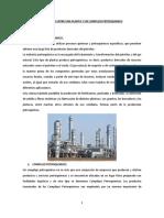 DIFERENCIA ENTRE UNA PLANTA Y UN COMPLEJO PETROQUIMICO LMT.docx