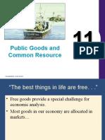 Public Goods11