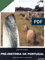 2002 Pré-História de Portugal.pdf