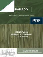 Bamboo Key