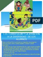 Adaptacion Curricular (1)