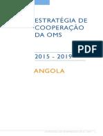 ccs-angola-2015-2019-p