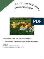 Proiect de Activitate Integrata flori de primavara
