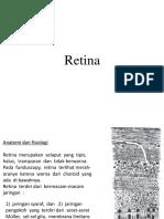 mata 13-Retina + retinopathy