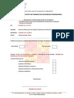 INFORME DE CONFORMIDAD DEL PROYECTO DE TRABAJO - copia.docx
