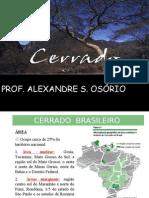 Geografia PPT - Biomas Brasileiros - Cerrado Brasileiro