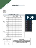 Formato Protocolo de Verticalidad