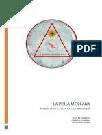 Manual apoyo Reinsercion.docx